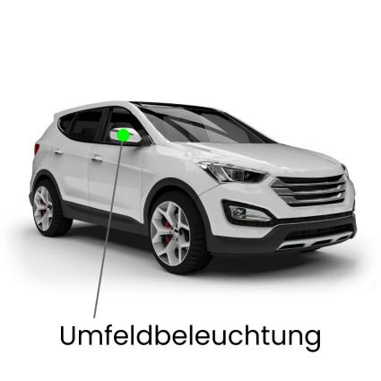 Umfeldbeleuchtung LED Lampe für Mercedes R-Klasse W251/V251